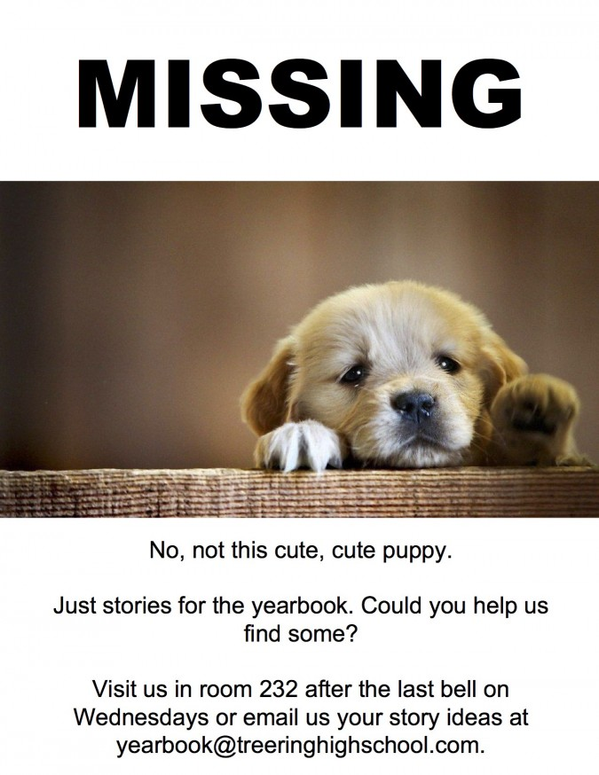 yearbook flyers for crowdsourcing content (puppy version)
