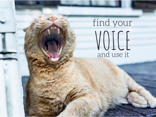 building-a-voice